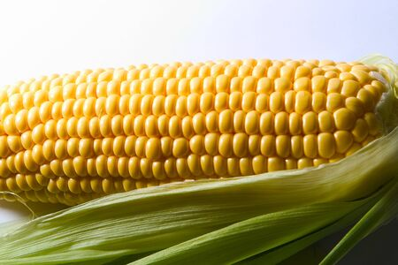 Corn is swinging on a white background .