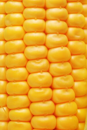 corn cooked swing yellow vegetable