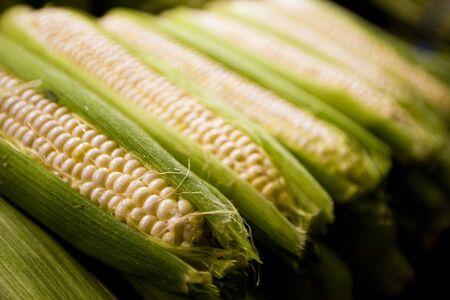 corn rocked white leaf vegetable . Zdjęcie Seryjne