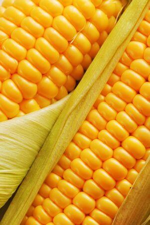 corn cooked swing yellow vegetable . Stok Fotoğraf