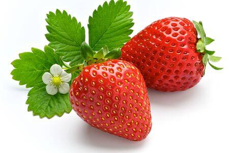 baies de fraise sur fond blanc