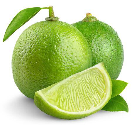 zwei Limettenfruchtscheibe auf weißem Hintergrund. Standard-Bild