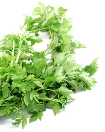 Greens parsley cilantro spices white background . Imagens - 131597523