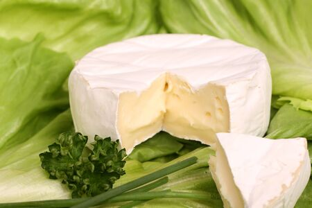 Cheese a piece of green cabbage green onion . Imagens