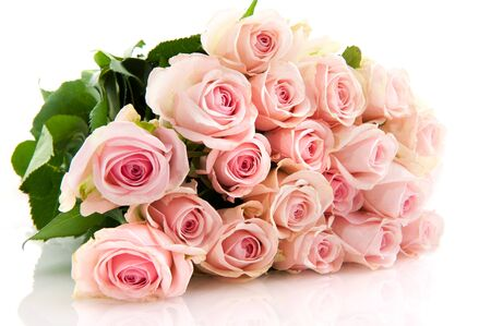 rose flowers pink bouquet bow white background .