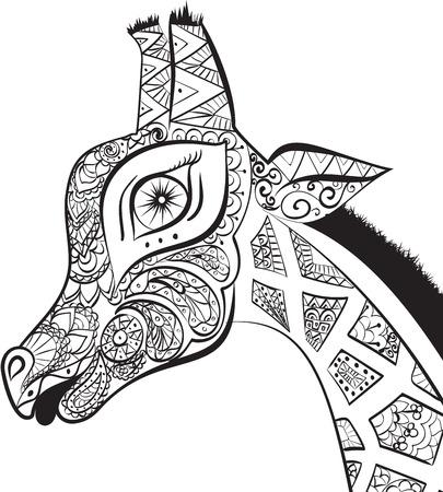 Beautiful adult Giraffe. Hand drawn Illustration of giraffe.  isolated giraffe on white background. The head of a shaped giraffe