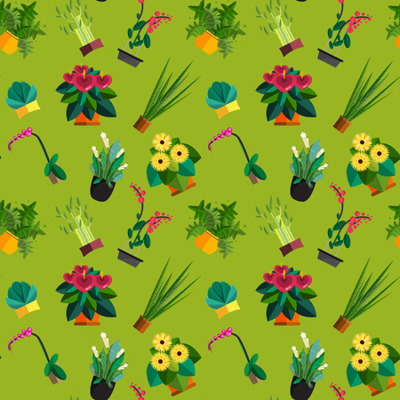 Seamless pattern of houseplants, indoor and office plants in pot. Dracaena, fern, bamboo, spathyfyllium, orchids, Calla lily, aloe vera, gerbera, snake plant, anthuriums. Flat seamless plants, icon set