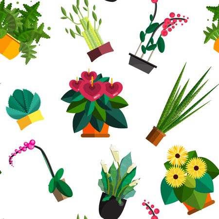 plant pot: Seamless pattern of houseplants, indoor and office plants in pot. Dracaena, fern, bamboo, spathyfyllium, orchids, Calla lily, aloe vera, gerbera, snake plant, anthuriums. Flat seamless plants, icon set