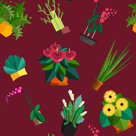 aloe vera plant: Seamless pattern of houseplants, indoor and office plants in pot. Dracaena, fern, bamboo, spathyfyllium, orchids, Calla lily, aloe vera, gerbera, snake plant, anthuriums. Flat seamless plants,  icon set