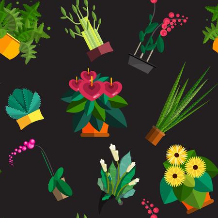 aloe vera plant: Seamless pattern of houseplants, indoor and office plants in pot. Dracaena, fern, bamboo, spathyfyllium, orchids, Calla lily, aloe vera, gerbera, snake plant, anthuriums. Flat seamless plants, vector icon set Illustration