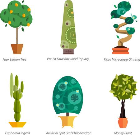 pot: Vector Set of indoor plants in pots. Illustration of floor trees homeplants for interior. Plants for home decoration. Potted tree homeplants with names. Big floor homeplants tree set.
