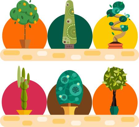 pot decoration: Garden plants.Potted flowers in the garden  illustration.Potted garden green plants. Greengouse garden plants and flowers.Planting greenery plants.Tropical garden plants.outdoor tree plants.