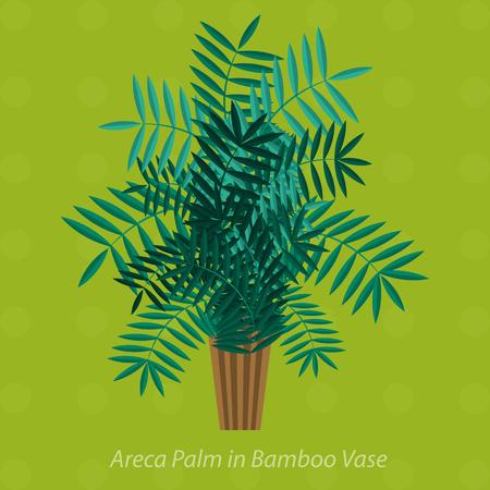 Afrika Pflanzen. Palmen, Blumen Und Grünes Gras, Weißen Hintergrund ...