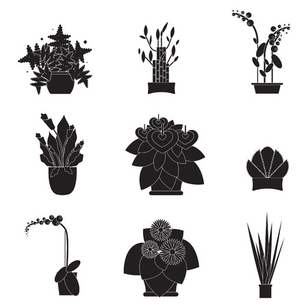 large group of object: Garden plants.Potted flowers in the garden vector illustration.Potted garden green plants. Greengouse garden plants and flowers.Planting greenery plants.Tropical garden plants.outdoor tree plants.