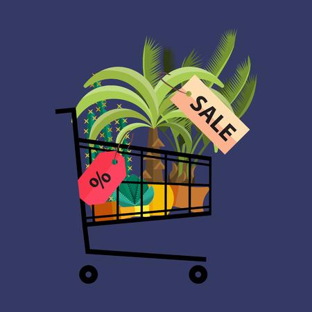 florist: Florist shop.Shopping cart with plants.Flower store flat design. Illustration