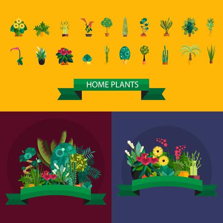 indoor garden: Vector Set of indoor plants in pots. Illustration of floor trees homeplants for interior. Plants for home decoration. Potted tree homeplants and flowers. Big floor homeplants tree set. Illustration