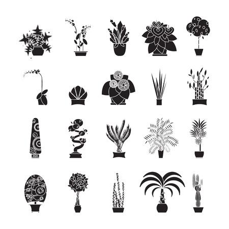 indoor garden: Illustration of houseplants, indoor and office plants in pot. Home plants for garden or home. Set of potted plants. Flat plants, vector plants icon set. Home plant for greenhouse. Illustration