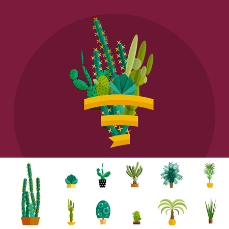 wild botany: Cactus set.Flat style.Cactus Vector collection of blooming succulents.Modern Green plant icons,desert nature,floral exotic,tropical flower,Home cactus garden,wild botany illustration.Vector simple set