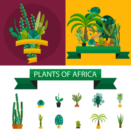 plants and trees: Africa plants. Palm trees, flowers and green grass, white background. Plants of Arica in set. Potted flat plants. Africa ecology herb. Plants of Africa for your garden.