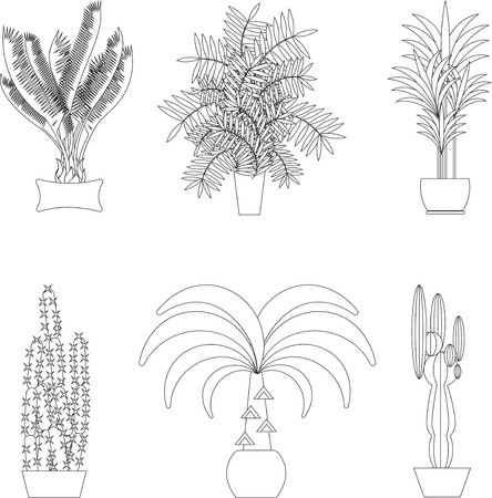 garden flower: Tropical plants,Set of silhouette potted houseplants.Tropical vector collection of houseplants.Modern Green plant icons,desert nature,floral exotic,tropical flower,Home tropical garden