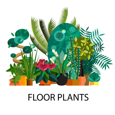 wild botany: Tropical plants, Set of flat potted houseplants.Tropical vector collection of houseplants.Modern Green plant icons,desert nature,floral exotic,tropical flower,Home tropical garden,wild botany illustration.Vector simple set