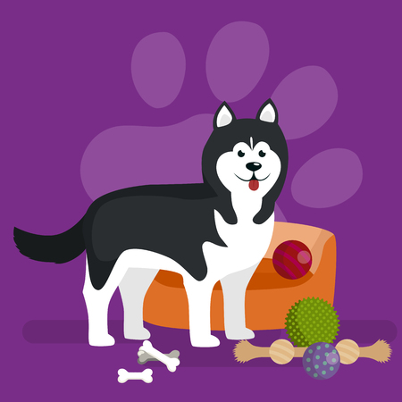 place mat: vector cute pet bed, place for sleeping dog isolated vector illustration