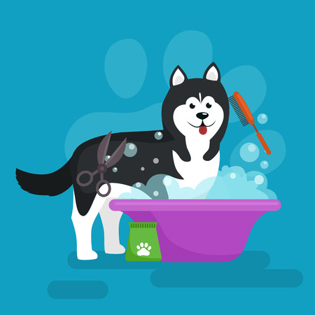 Dog hair hygiene. Vector Illustration Set, Pet Grooming and care, haircut 일러스트