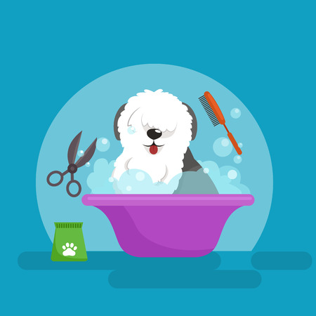 Dog hair hygiene. Vector Illustration Set, Pet Grooming and care, haircut Illustration