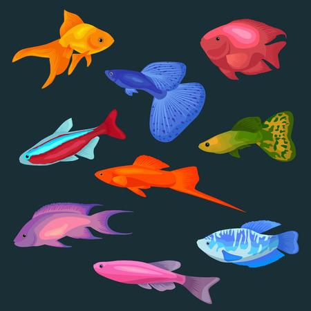 parrotfish: Cute fish vector illustration icons set. Fish flat style vector illustration. Fish icons isolated. Tropical fish, sea fish, aquarium  fish set isolated on white background. Sea color flat design fish