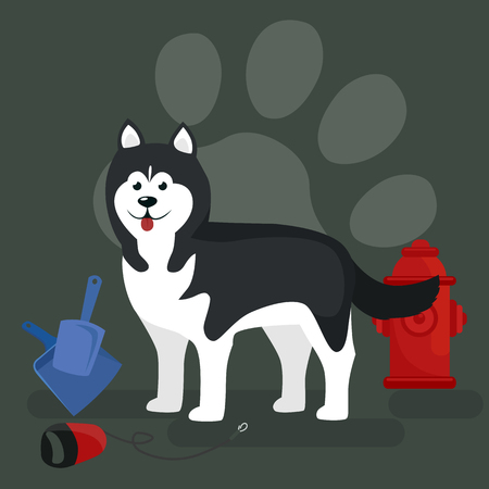 dog walking: Dog collars and lead for walking, transporting pets vector illustration