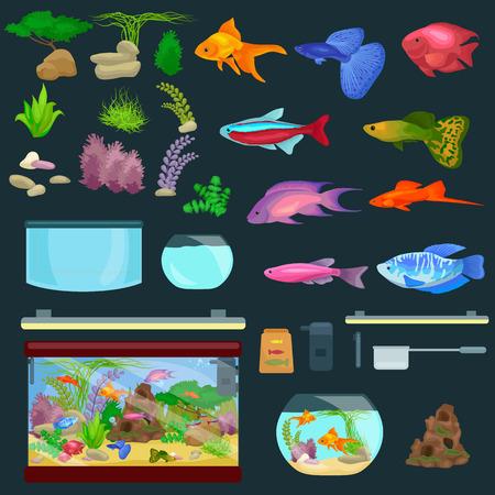 Aquarium fish, seaweed underwater, banner template layout with marine animal vector illustration