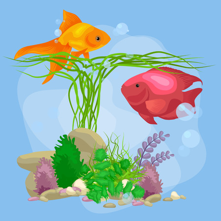Underwater vector world background with fish, seaweed and bubbles, illustration Illustration