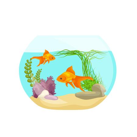 seaweed: Aquarium isolated on white. Fish, seaweed underwater, marine animal illustration