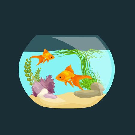 fish tank: Aquarium fish, seaweed underwater, tank isolated on dark background  illustration Illustration
