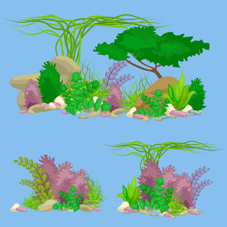 flora fauna: Set of isolated colorful corals and algae on a white background. underwater flora and fauna.