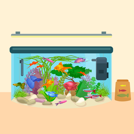 tropical tank: Fish tank, aquarium with water, sea tropical animals, algae and underwater plants, corals, equipment vector illustration