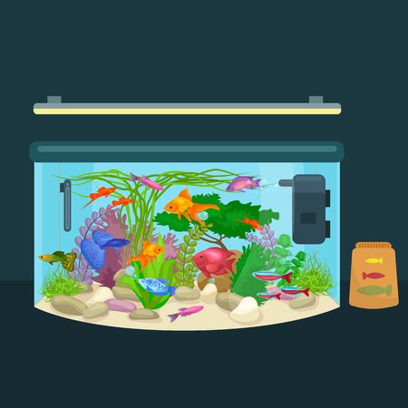 tank fish: Aquarium fish, seaweed underwater, tank isolated on dark background vector illustration