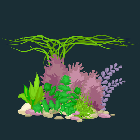 Set of isolated colorful corals and algae on a dark background. Vector underwater flora and fauna. Illustration