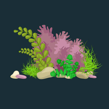 flora fauna: Set of isolated colorful corals and algae on a dark background. Vector underwater flora and fauna. Illustration