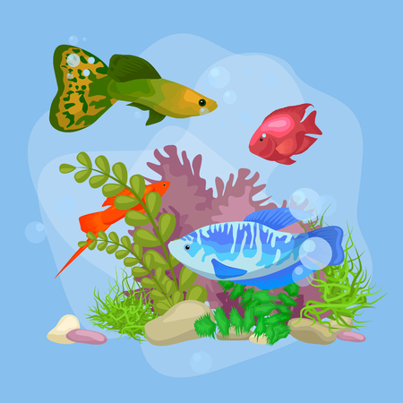 parrotfish: Underwater vector world background with fish, seaweed and bubbles, illustration Illustration