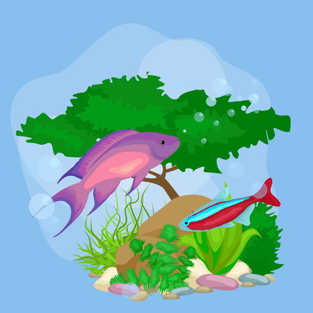 tetra fish: Underwater vector world background with fish, seaweed and bubbles, illustration Illustration