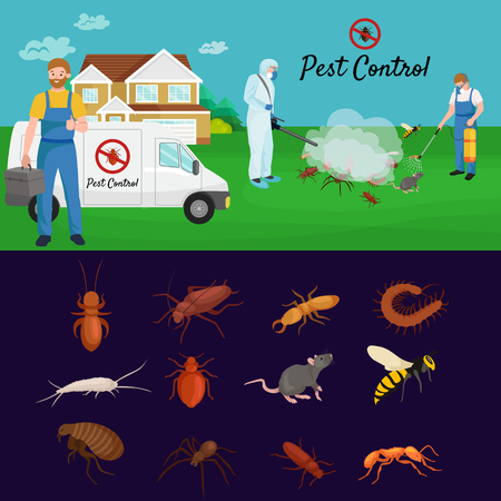 exterminator: Pest control concept with insects exterminator silhouette flat vector illustration set