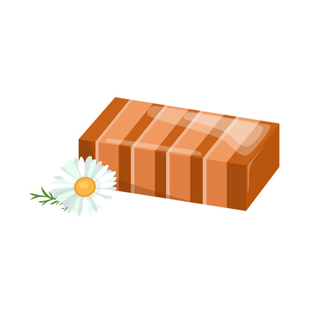 handmade soap: Homemade bars soaps, flowers and essential oil. vector illustrations icon set Illustration