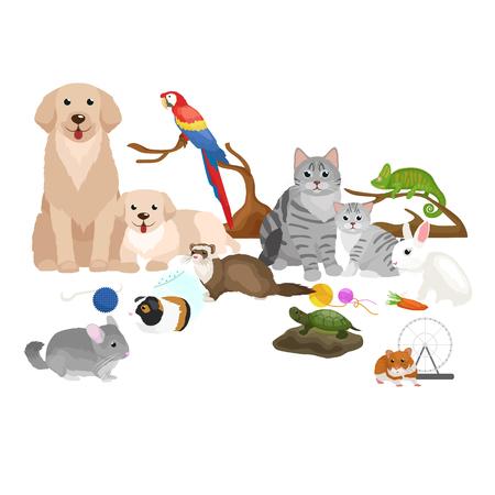Home pets set, cat dog parrot goldfish hamster ferret, cartoon vector illustration, domesticated animals