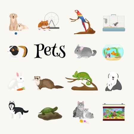 Huis huisdieren set, kat hond papegaai goudvis hamster fret, cartoon vector illustratie, gedomesticeerde dieren Stockfoto - 57889536