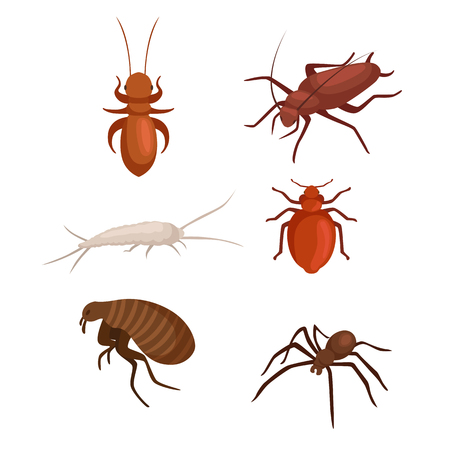 pest control equipment: Pest control concept with insects exterminator silhouette flat vector illustration set