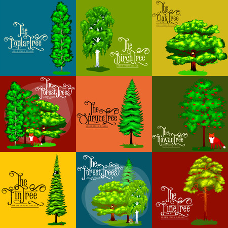 rowan tree: Wild forest green trees, plants and animals. Cartoon vector set trees in outdoor park. Outdoor trees in the park with branch and leafs. Pine tree oak spruce birch poplar rowan maple fin Illustration