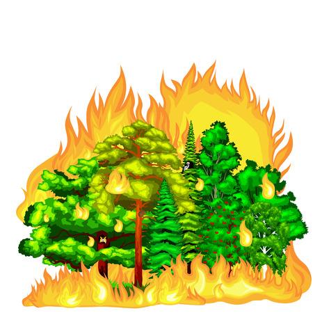 Bos Brand, brand in het bos landschap schade, natuur ecologie ramp, hete brandende bomen, bosbrand gevaar vlam met rook, gloed hout achtergrond vector illustratie. Wildvuur brandende boom in rood en oranje kleur. Stockfoto - 59925026
