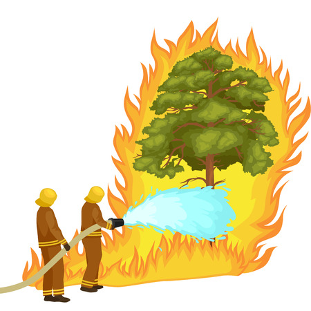 fire damage: Firefighters in protective clothing and helmet with helicopter extinguish with water from hoses dangerous wildfire.Man fighter rescue helicopter put out the fire in forest landscape damage vector Illustration