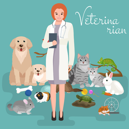 doggie: Group of pets and veterinary, doctor with animals patient vector illustration